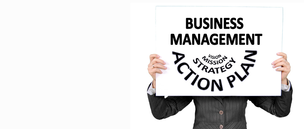 Business Management - Vision Mission Strategy Action Plan